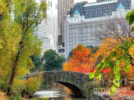 Central Park by Raymond Earley