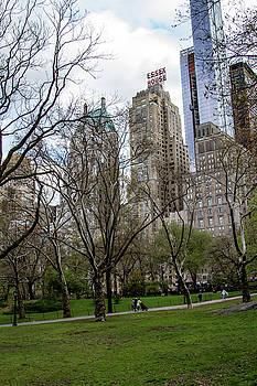 Central Park by Robert J Caputo