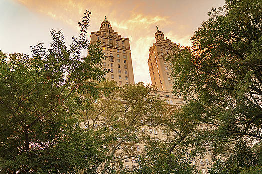 Central Park Skyline by Vivienne Gucwa