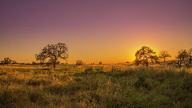 Central Valley Sunset by Khalid Mahmoud