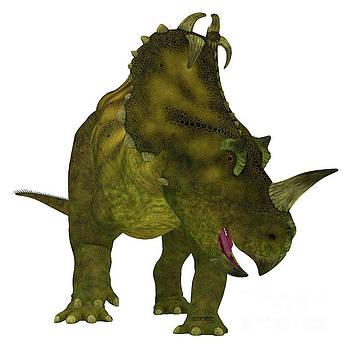 Corey Ford - Centrosaurus Dinosaur Neck Frills