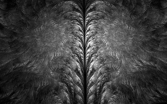 Cerebellum Grove by GJ Blackman