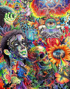 Cerebral Dysfunction by Callie Fink