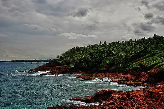 Cerro Gordo Vega Alta Puerto Rico by Frank Feliciano