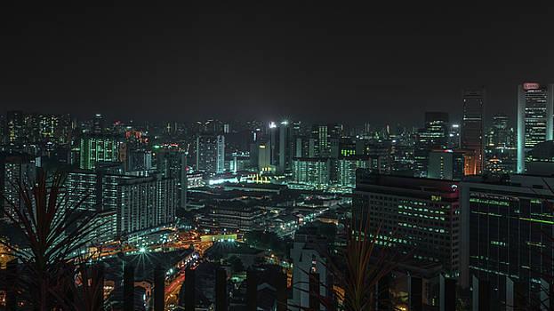 Cerulean Views by Nisah Cheatham