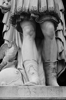 Paris Cesar Statue by Heidi Hermes