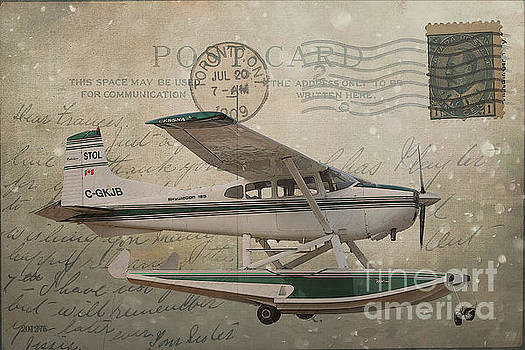 Cessna Skywagon 185 on Vintage Postcard by Nina Silver
