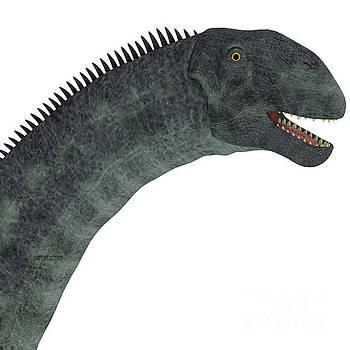 Corey Ford - Cetiosaurus Dinosaur Head
