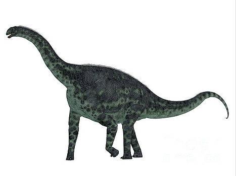 Corey Ford - Cetiosaurus Dinosaur Side Profile