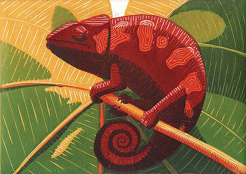Chameleon by Daniel Ribeiro