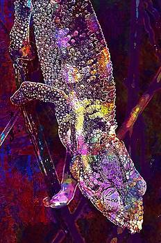 Chameleon Lizard Animal World  by PixBreak Art