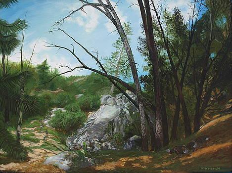 Changing Seasons by Jill Iversen