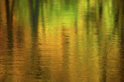 Karol Livote - Changing Seasons Reflecting