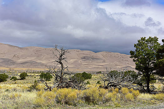 Changing Skies at the Great Sand Dunes by Jeffrey Hamilton