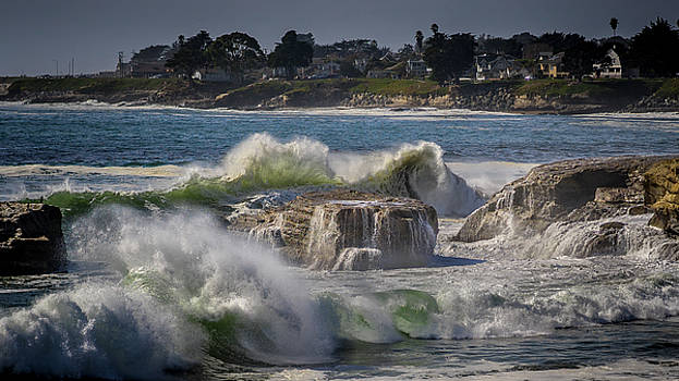 Chaos in Santa Cruz by LiveforBlu Gallery