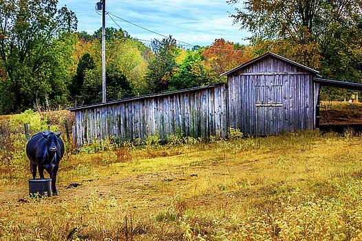 Chapel - Hill Barn by Barry Jones