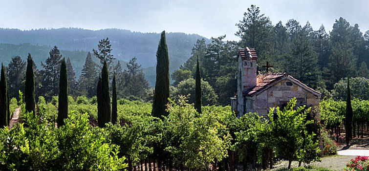 Chapel in the Napa Valley Vineyards by Anne Branson