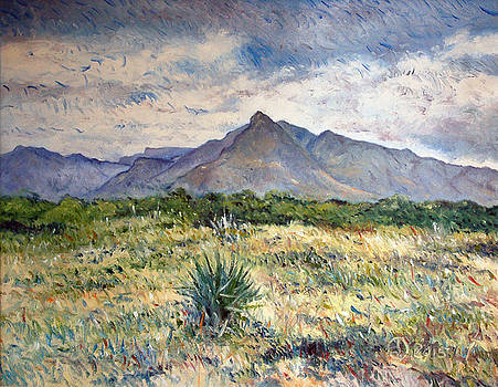 Chapmans Peak Cape Peninsula South Africa by Enver Larney