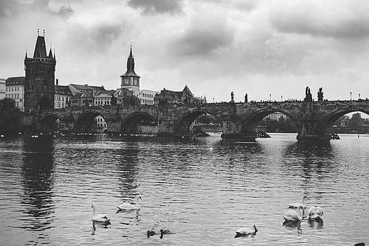 Charles Bridge by Nicolas Artola