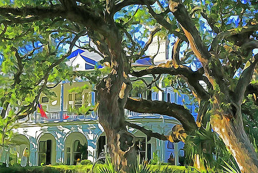 Dennis Cox WorldViews - Charleston Mansion Oaks