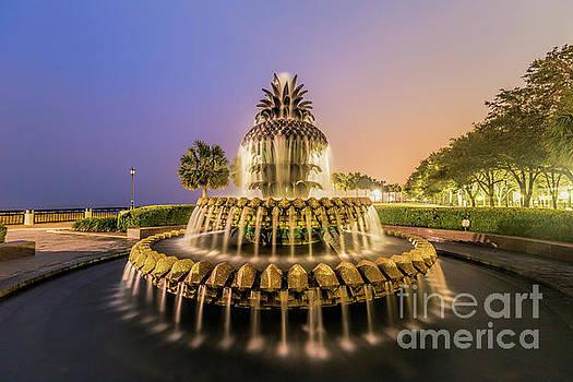 Charleston Pineapple Fountain by Robert Loe