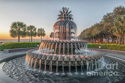 Dale Powell - Charleston Pinnapple Fountain in Historic Waterfront Park