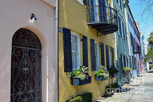 Charleston Rainbow Row by Catherine Sherman