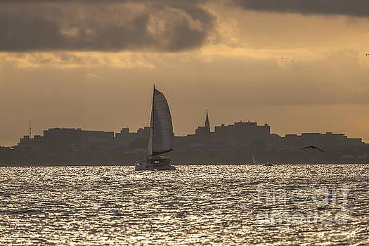 Dale Powell - Charleston Sailing