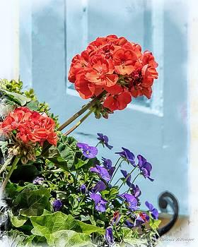 Charleston SC Window Aqua Blue Shutter, Flowers by Melissa Bittinger