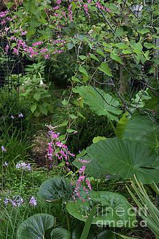 Dale Powell - Charleston Secret Garden Path
