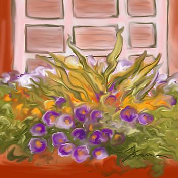 Charleston Window Box by Jean Pacheco Ravinski