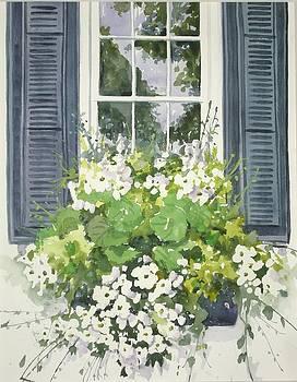 Charleston windowbox by Becky Taylor