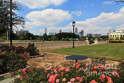 Jill Lang - Charlotte Midtown Park in Summer