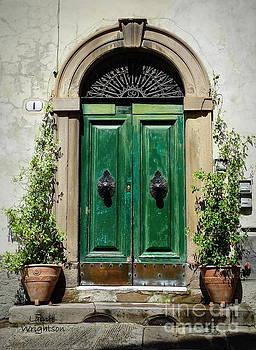 Charming Green Door in Lucca by Lainie Wrightson