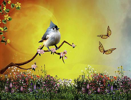 John Junek - Charming Spring Time