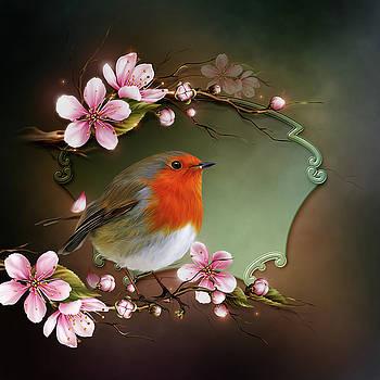 John Junek - Charming Robin