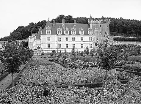 Chateau Villandry Vegetable and Flower Gardens by Joseph Hendrix