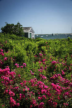 Chatham Boathouse by Jim Gillen