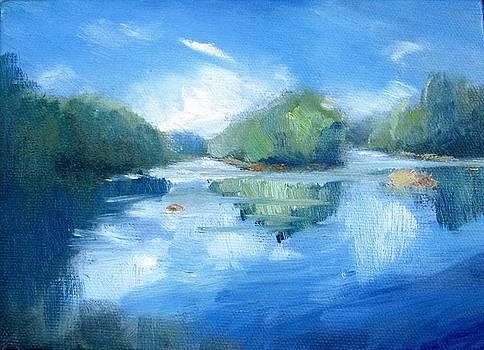 Chattahoochee River-Summer by Keiko Richter