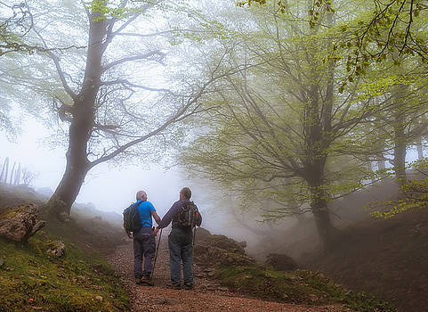 Chatting between the fog by ACAs Photography
