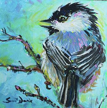 Chatty Chickadee by Susan Davies