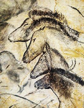Weston Westmoreland - Chauvet Horses