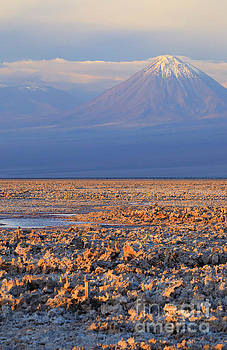 Chaxa Lagoon at sunset in the Atacama Desert Chile  by Louise Heusinkveld