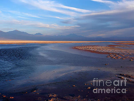 Chaxa Lagoon Atacama Desert Chile by Louise Heusinkveld