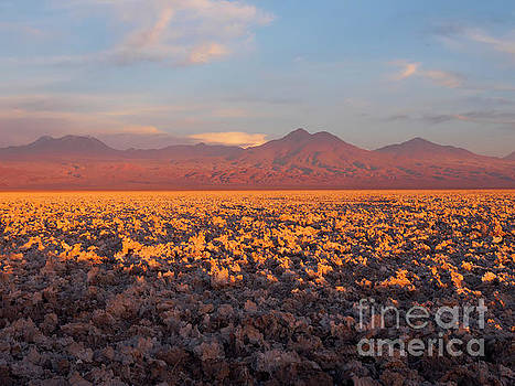 Chaxa Lagoon in the Atacama Desert Chile, at sunset by Louise Heusinkveld