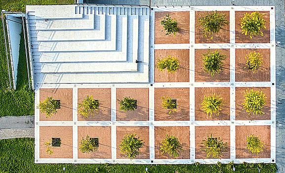 Checkerboard Square by Andrea Bonavita