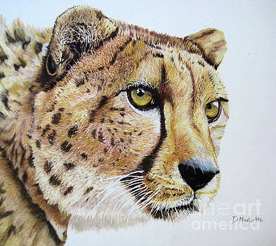 Cheetah by Diane Marcotte