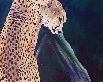 Cheetah by Donna Drake