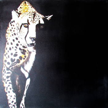 Cheetah by Tracey Armstrong