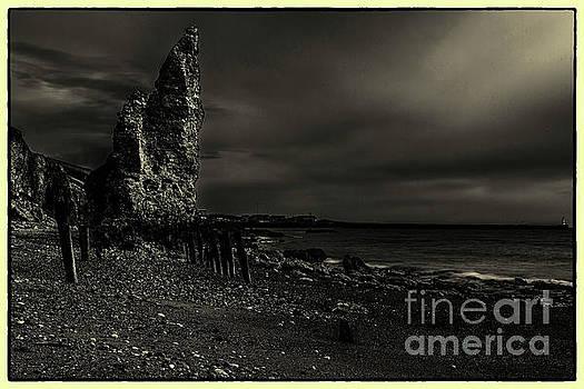 Chemical Beach #2 by John Cox
